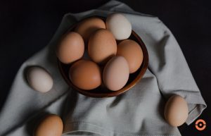 portfolio diversification: eggs in a basket